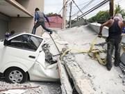 菲律宾保和岛7.2级地震已致93人身亡
