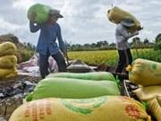 越南九龙江三角洲各省着力寻求可持续发展措施