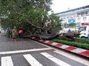 越南全社会各界捐款帮助中部灾民重建家园