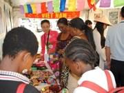 越南参加2013年南非外交展览会