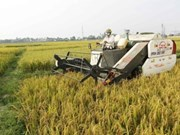 越南与以色列加强农业领域合作
