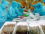 美国成为越南最大虾类产品进口国