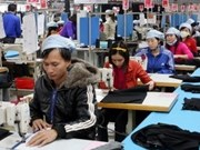欧盟希望2014年底同越南签署自贸区协定