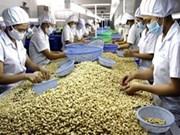 越南同奈省腰果壳油出口量猛增