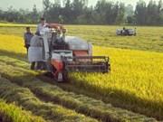 越南农业产业迎来新发展机遇