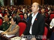 越南第十三届国会第六次会议:继续基本上解决代表和选民的质疑