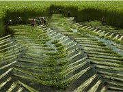 越南遗产图片展在升龙皇城遗迹区举行
