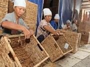 越南面向有效发展 吸引更多外援