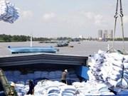 中国仍是越南大米最大进口市场