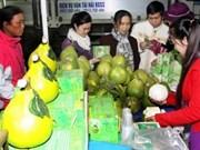 300多家企业参加2013年大叻花卉国际贸易展销会