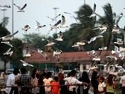 联合国帮助缅甸改善社会保障问题