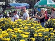 2014年1月越南顺化古都遗迹区接待国际游客达10.48万多人次