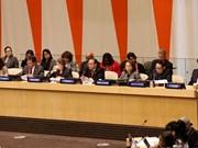 越南主持召开联合国经社理事会高级对话会