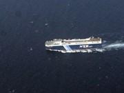 马航客机失踪事件:VNREDSAT-1拍摄的卫星照片无可疑迹象