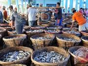 印尼与法国加强水产领域的合作