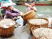 中国专家协助越南广宁省建设云屯经济特区