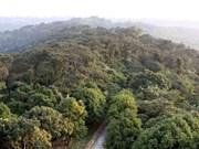 广宁省致力将姑苏岛县发展成为国家级海岛生态休闲度假旅游区