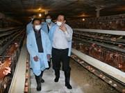 越南政府副总理黄忠海视察谅山省预防禽流感工作