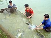 武文宁副总理:加大核查各项水产养殖捕捞政策力度