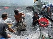 2014年越南水产节落下帷幕
