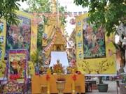 高棉族同胞传统节日拉开越南民族文化日系列活动序幕