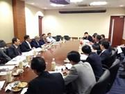 越南与印度的战略伙伴关系蓬勃发展
