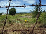 越美橙毒剂/迪奥辛圆桌对话会议在同奈省举行