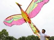 2014年第五届国际放风筝节圆满落幕