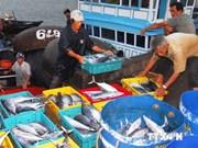越南水产品产量保持较高增长率