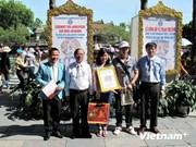 越南承天顺化省迎来2014年第一百万名游客