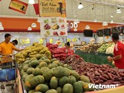 越南与新加坡双边贸易保持增长势头