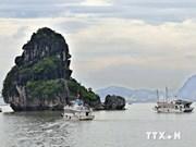 越南广宁省:下龙湾海上过夜游客量呈大幅增长趋势