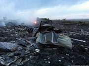马航客机在乌克兰境内坠毁 机上298人全部死亡