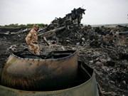 越方证实有三名越南人乘坐马航坠毁的MH17客机消息