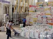 越南大米出口价格创新高记录
