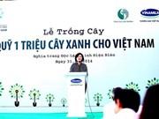 """""""植百万颗树""""项目增加全国绿化面积"""
