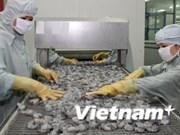 2014年上半年越南虾类出口金额达约18亿美元