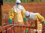 越南政府总理召开紧急会议部署埃博拉病毒疫情预防工作