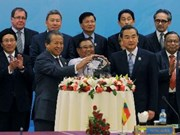 越南副外长范光荣:越南为东盟加强团结作出积极贡献