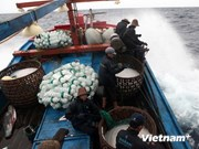 越南富安省出资巨额支持远洋捕捞业发展