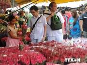 2014年上半年菲律宾接待国际游客量达243万人次