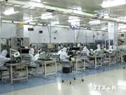 越南企业注重和日本企业合作扩大经营市场