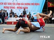 第16次越南全国青少年传统摔跤锦标赛:军队队荣登榜首