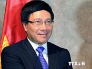 越南外交部长:对外活动坚持维护国家利益