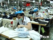越南——外国大型集团的投资乐土