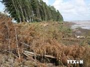 增强越南槟知省和茶荣省应对气候变化的能力