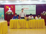 """1000多名少年儿童将参加2014年""""月亮节-点亮越南儿童之梦""""活动"""