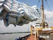 2014年8月越南大米出口创汇36亿多美元