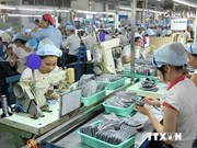 今年前8个月越南对中国贸易逆差达172.6亿美元
