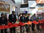 越南政府副总理出席第十一届东盟—中国博览会暨商务与投资峰会